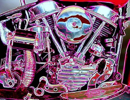 Panhead by Michael Todd