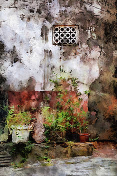 Panjim flower pots by Gavin Bates