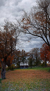 Pano of Small Barn in the Fall by Samantha Boehnke