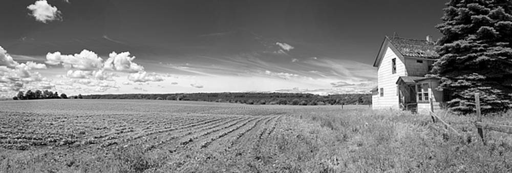 Panorama - Farm View 1 by Stephen Mack