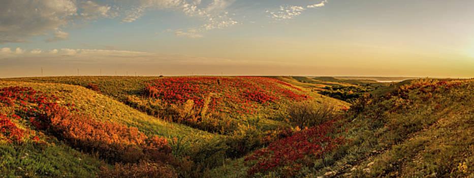 Scott Bean - Autumn Splendor