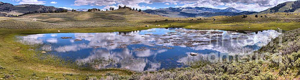 Adam Jewell - Panoramic Reflection In The Yellowstone Wetlands