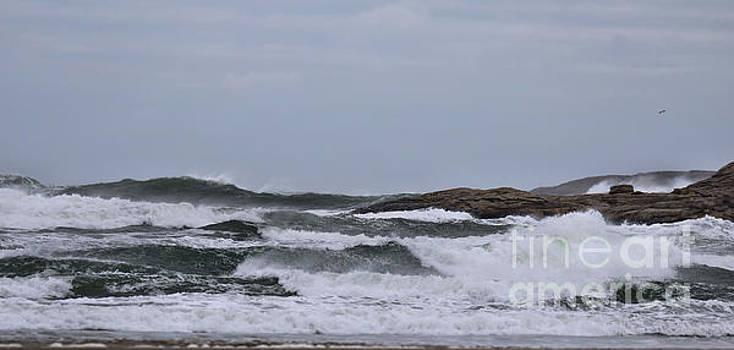 Sandra Huston - Panoramic Storm Effects At Popham Beach, Maine