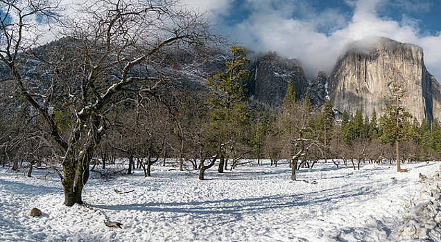 Panoramic View of El Capitan With Low Clouds on the Top and Snow by PorqueNo Studios