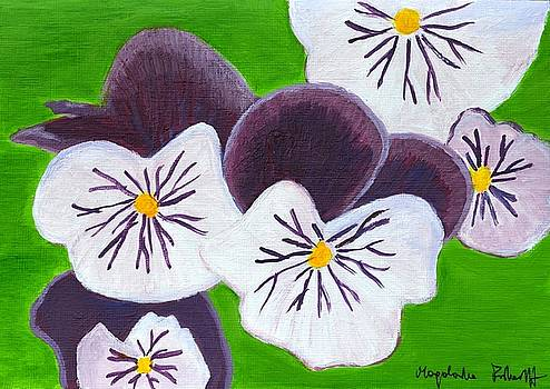 Pansies  by Magdalena Frohnsdorff