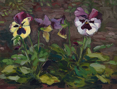 Pansies by William Noonan