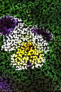 Pansy Cube by Michelle  BarlondSmith