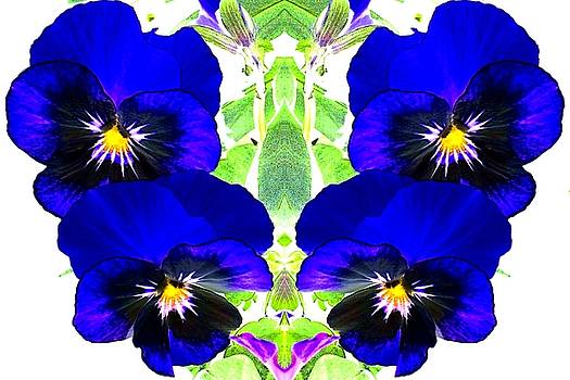 Pansy Pattern by Marianne Dow