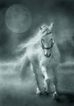 Papi Moon Grey by Sue Fulton
