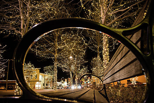 Papillion Lights by Krista Giese