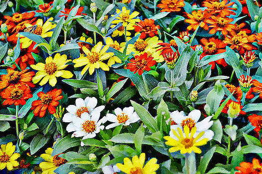 Glenn McCarthy Art and Photography - Parade Of Flowers One - Horizontal