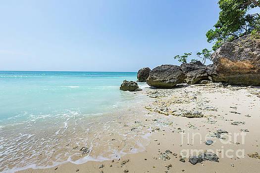 Paradise beach at Zanzibar in Tanzania, Africa by Mariusz Prusaczyk