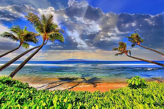 Paradise Found - Kaanapali Beach by DJ Florek