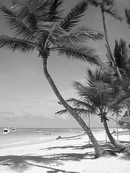 Paradise in Black and White by Jessica Hoover