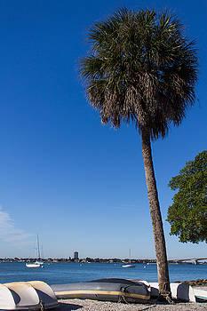 Paradise in Sarasota, Fl by Michael Tesar