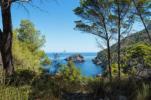 Paradise like view with pine trees an Mediterranean sea by Maximilian Wollrab