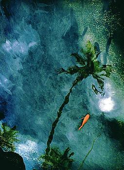 Paradise Reflected by Ruth Kongaika