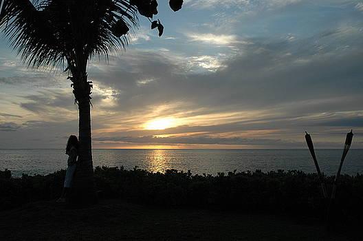 Paradise Sunset by George Tindira