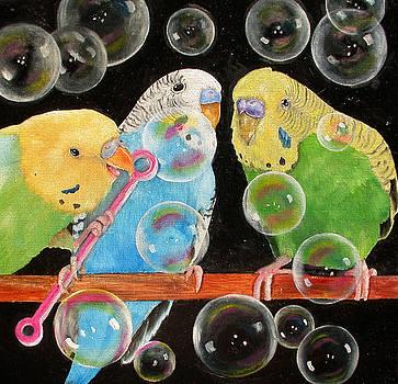Parakeet Bubbles by Mary Hughes