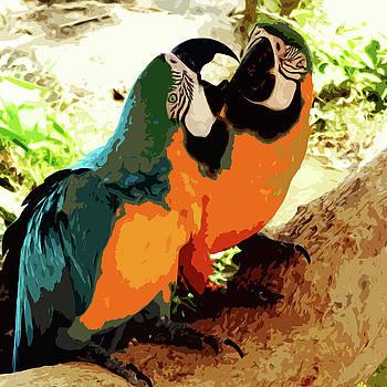 James Hill - Parakeets