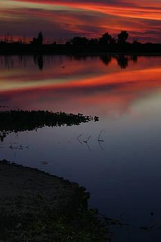 Balanced Art - Parana Sunset
