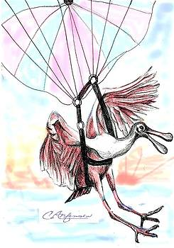 Parasailing spoonbill by Carol Allen Anfinsen