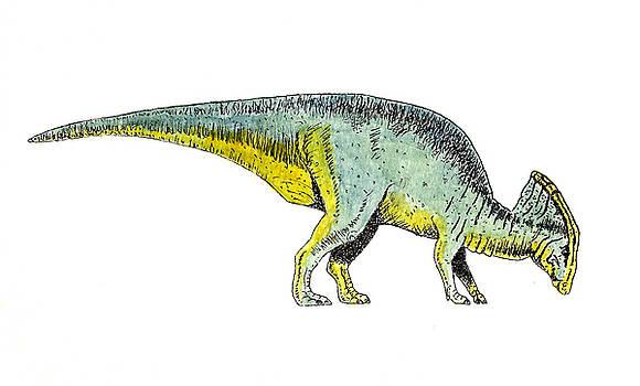 Parasaurolophus by Michael Vigliotti