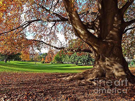 Parc Monceau by Alex Cassels