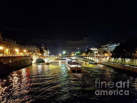 Paris at Night by Lynn Bolt