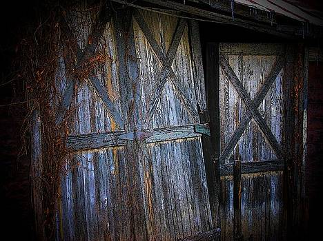 Paris Barn Door by Joyce Kimble Smith