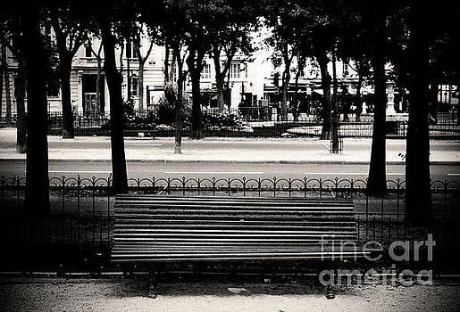Paris Bench by RicharD Murphy