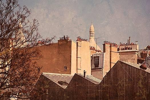 Paris chimneys pot by Valerie Dauce