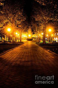 Park at Night by John Baumgartner