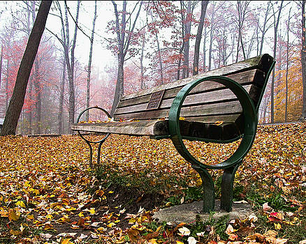 Edward Sobuta - Park Bench 2