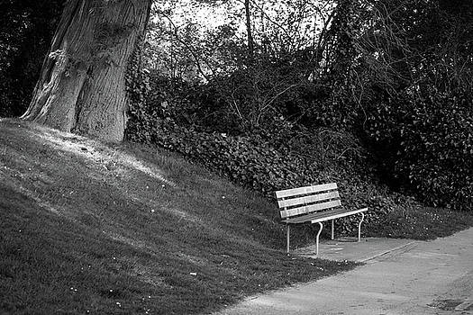 Park Bench by Michael Thibault