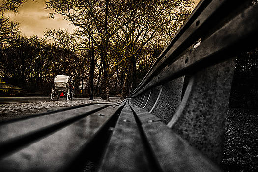 Park Bench by Mike Berry