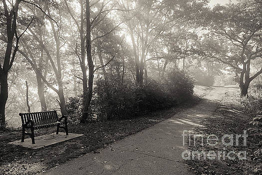 Park Bench Path with Foggy Sunbeams Winona Minnesota by Kari Yearous