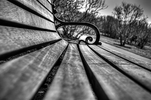 Park Bench by Tim Buisman