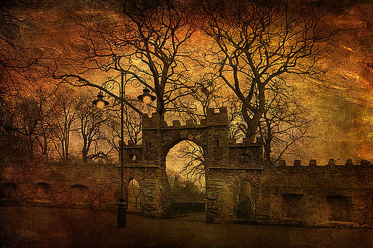 Park Gates by Martin Fry
