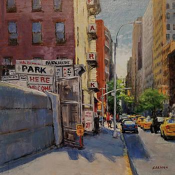 Park Here by Peter Salwen
