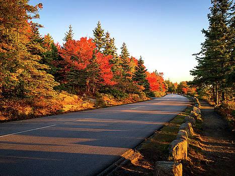 Park Loop Road by Robert Clifford