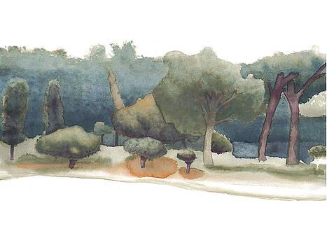 Park Of Aclimacao by Daniel Ribeiro