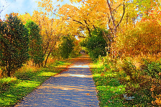 Park Path by Michael A Klein