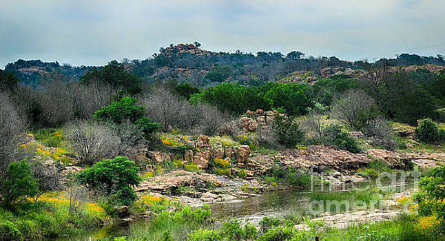 Park Road 4 Inks Lake  by Toma Caul