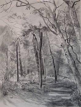 Park Trail by Karen Boudreaux