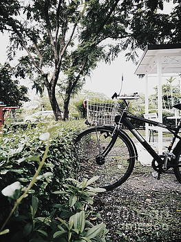 Parked Bicycle Into Bush by Sirikorn Techatraibhop
