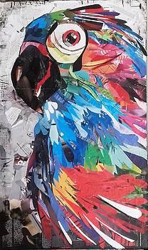 Parrot by Ana Almeida