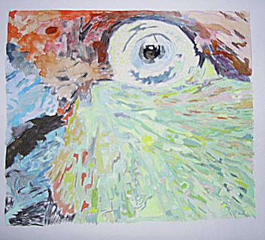 Parrot by Lea Cox
