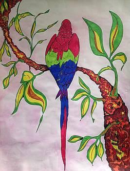 Parrot by Robert Hilger