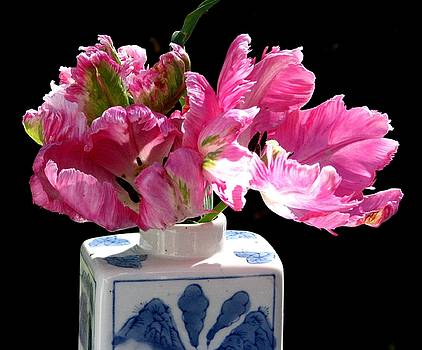 Parrot Tulips On The Windowsill by Angela Davies